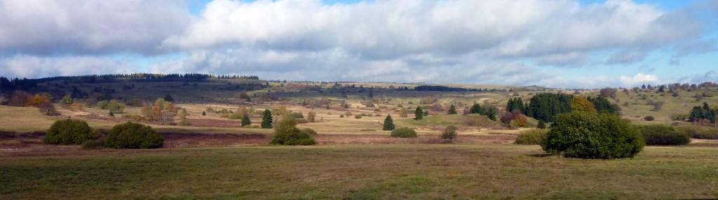 Hochebene der Langen Rhön mit Borstgraswiesen