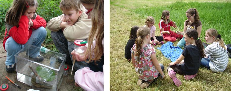 Gewässerexkursionen mit Schulklassen und Kindergärten im Projektgebiet